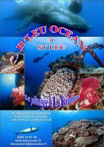 BLEU OCEAN int